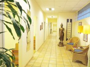 akupunktur frankfurt