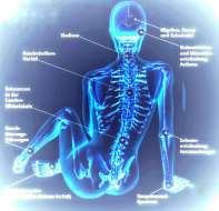 Osteo-Akupunktur